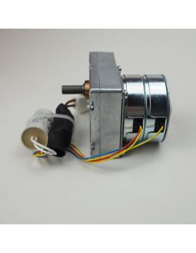 Schneckenmotor mit Kondensator für Rika Memo, Premio...